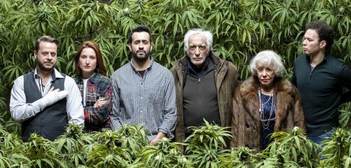 Gérard Darmon, Jonathan Cohen et Julia Piaton parmi le cast de la série de Netflix Family Business